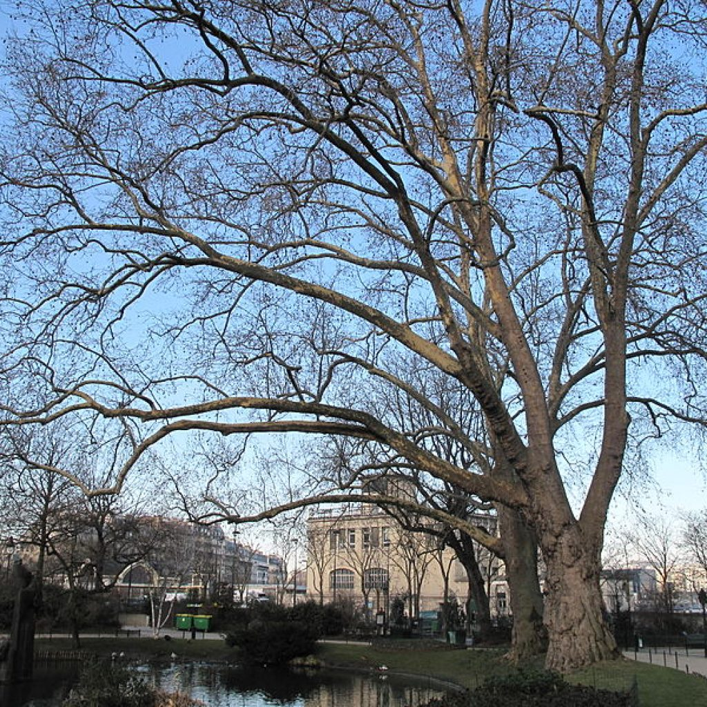 Square des Batignolles - Puur Parijs