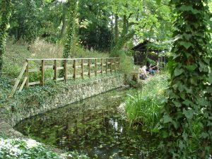 Jardin Sauvage Saint-Vincent2