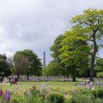 Vue_sur_la_Tour_Eiffel_du_jardin_des_Tuileries